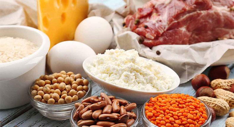 protein_nahrung