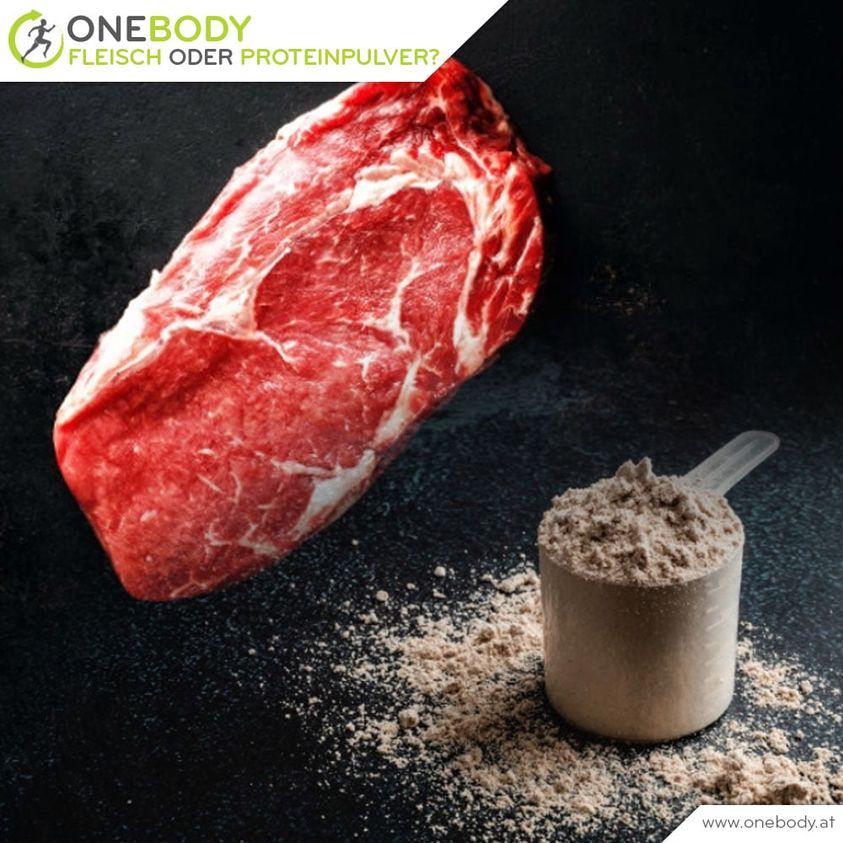 fleisch oder proteinpulver